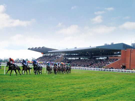 fairyhouse1