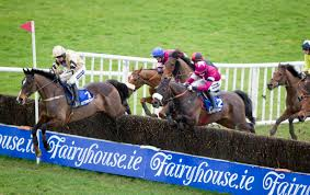 fairyhouse2