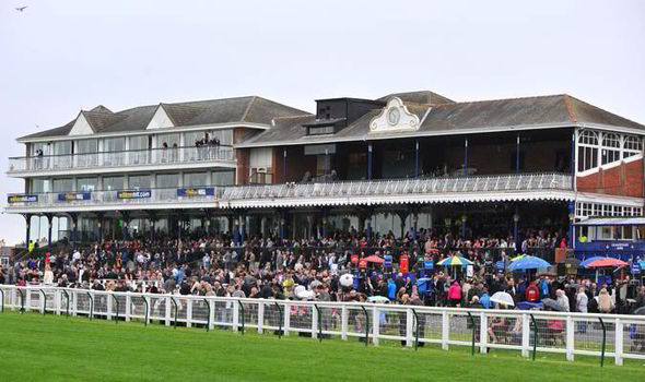 Ayr racecourse - horse racing picture