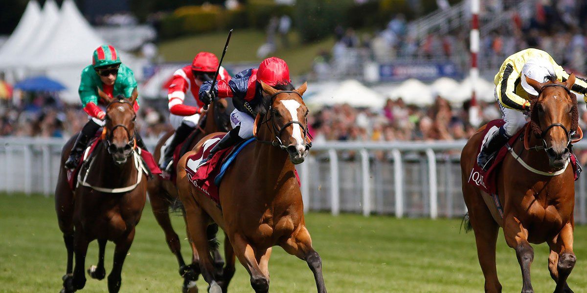 horse racing advice
