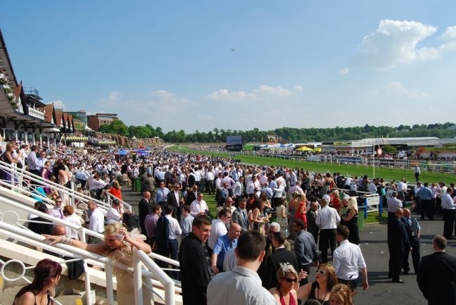 chester racecourse view from the stands