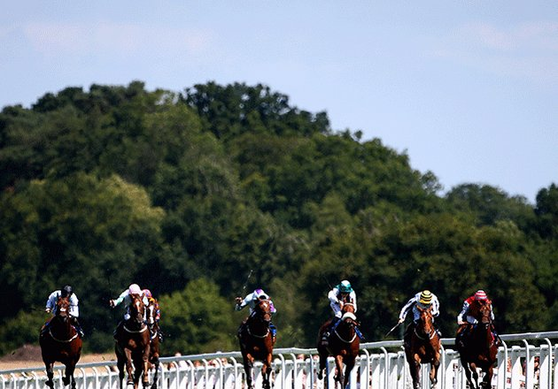 generic horse racing picture image