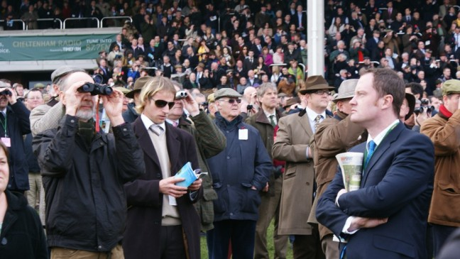 generic crowd at a horse racing meeting