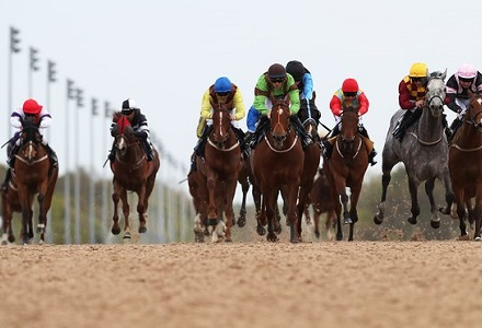 newcastle_racecourse_daytime_1