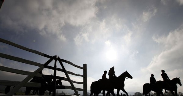 horse racing image pic picture
