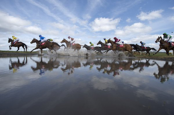 misc horse racing picture