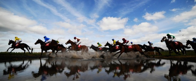 misc horse racing picture image