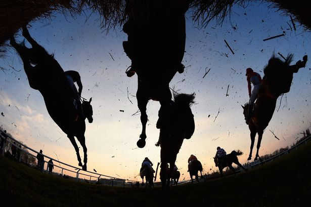 horse racing image pic