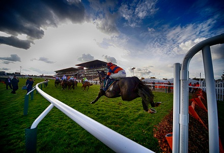 horse racing picture image pic