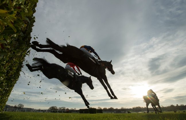 horse racing image picture
